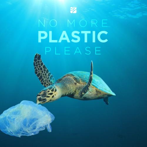 Vamos a retirar el plástico