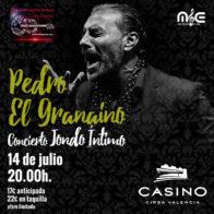 Concierto Pedro El Granaino 14/7 20h